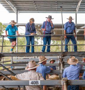 Ramsey & Bulmer Livestock Sale